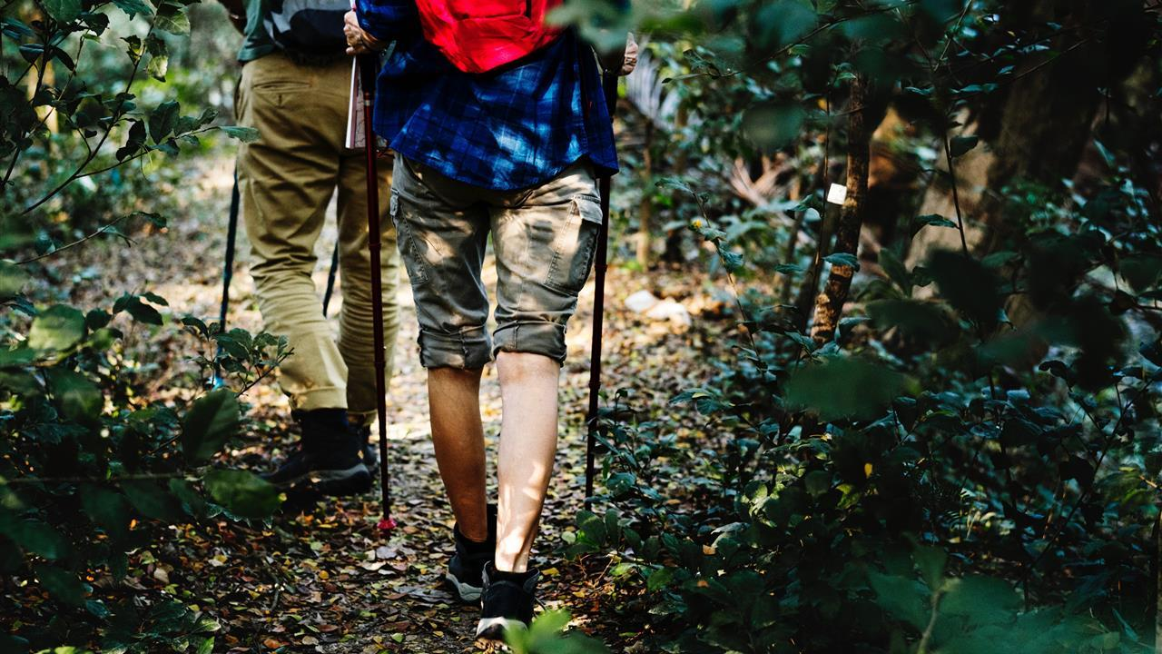 Complimentary Guided Hikes